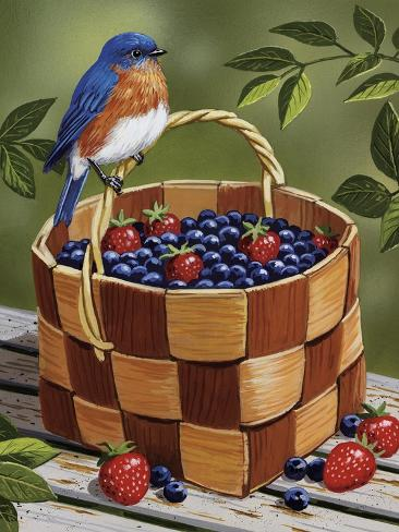 Blueberry Basket Giclee Print