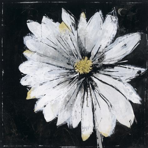 Black And White Digressions II Art Print