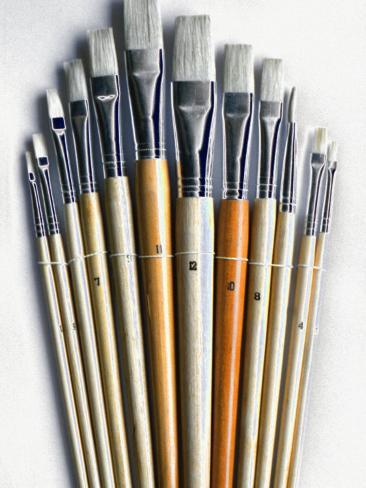 Set of Artist Paintbrushes Fan Out Photographic Print