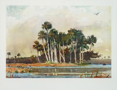 The Grove Collectable Print