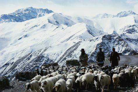 Nepal Photographic Print
