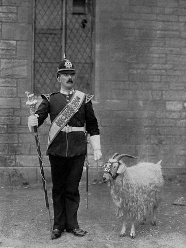 The Drum Major and Goat of the 1st Battalion the Welch Regiment, 1896 Impressão giclée