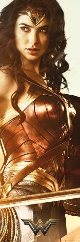 Wonder Woman Sword Door Poster