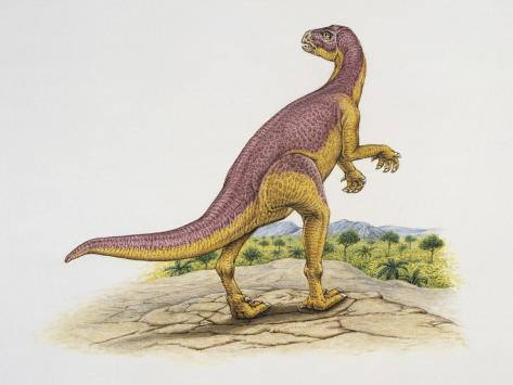 Xiaosaurus in the Forest その他