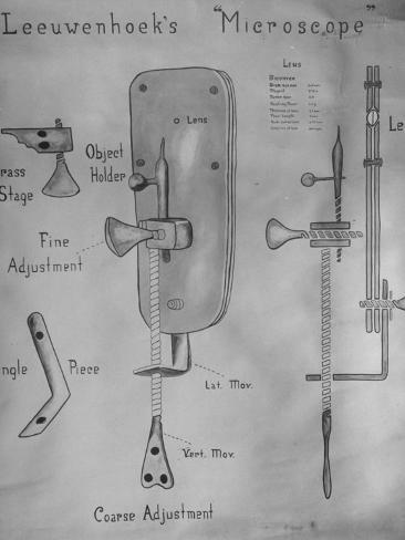 Detailed Drawing of Anton Leeuwenhoek's Microscope Photographic Print