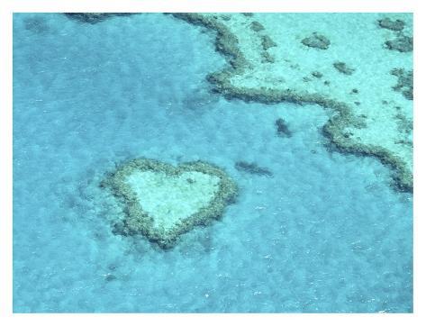Heart Island, Australia Stampa artistica