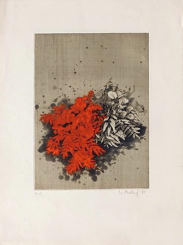Fleurs rouges Lámina coleccionable