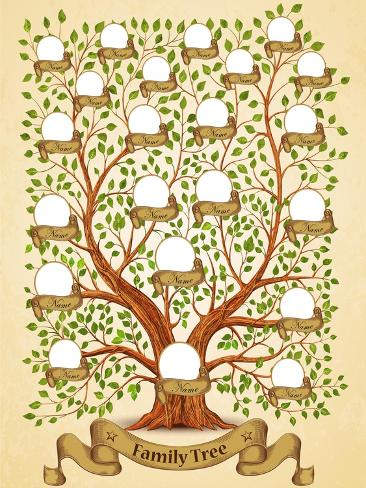 Family Tree Template Vintage Vector Illustration Stampa artistica