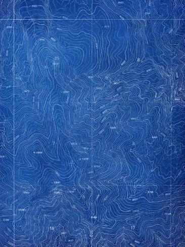 Topographical blueprint pattern posters by yobro at allposters topographical blueprint pattern malvernweather Choice Image