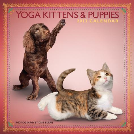 Yoga Kittens and Puppies - 2013 Mini Wall Calendar Calendars