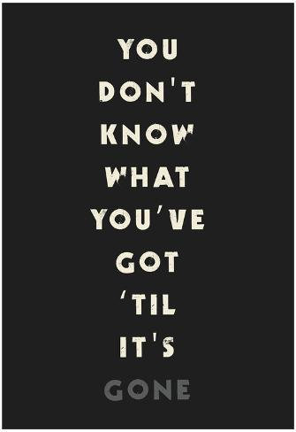 You Don't Know What You've Got 'Til It's Gone Poster
