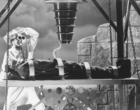 Young Frankenstein Valokuva