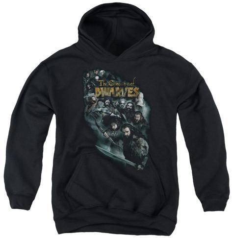 Youth Hoodie: The Hobbit - Company Of Dwarves Pullover Hoodie