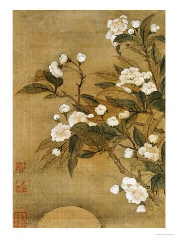 Pear Blossom and Moon Giclee Print