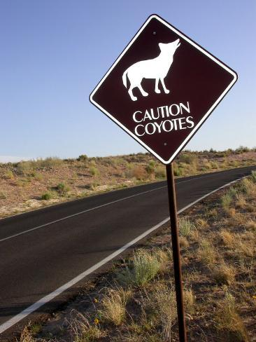 Coyote Crossing Street Sign on Desert Road Photographic Print