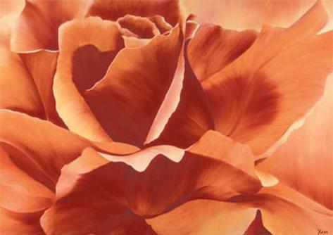 Full in Bloom II Art Print