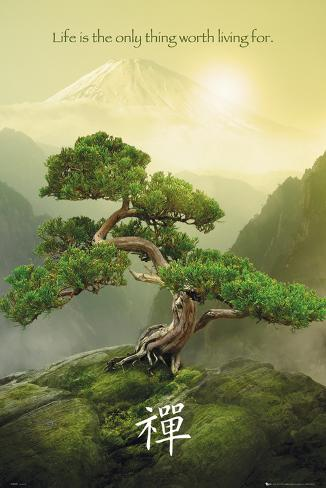 Zen-Mountain Poster