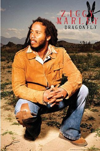 Ziggy Marley (Dragonfly) Music Poster Print Poster
