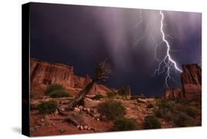 Lighting with a Mesquite Tree at Courthouse Rock by Raul Touzon