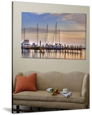 Titusville Marina by Rene Griffith