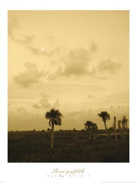 Viera Dusk I by Rene Griffith