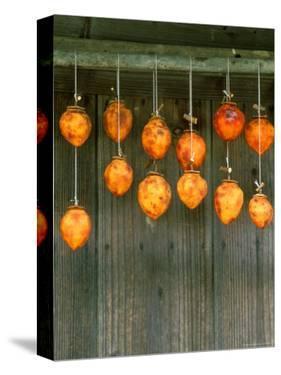 Dried Persimons, Shizuoka, Japan by Rob Tilley
