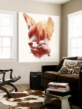 Blind Fox by Robert Farkas