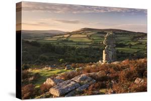 Bowerman's Nose, Dartmoor National Park, Devon, UK by Ross Hoddinott