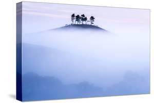 Colmers Hill in morning mist, near Bridport, Dorset, UK by Ross Hoddinott