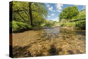 River Exe, Near Winsford, Exmoor National Park, Somerset, UK by Ross Hoddinott