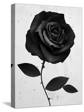Fabric Rose by Ruben Ireland