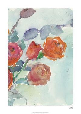 Rose Appeal II by Samuel Dixon