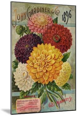 Seed Catalogues: John Gardiner and Co, Philadelphia, Pennsylvania. Seed Annual, 1896
