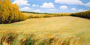 Wild Meadows by Stephen Henning