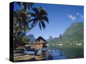 Cook's Bay, Moorea, French Polynesia, South Pacific, Tahiti by Steve Vidler