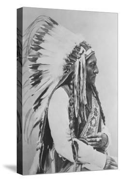 Sioux Chief Sitting Bull by Stocktrek Images