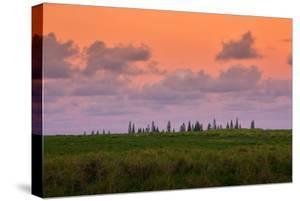 Sunset Sky and Hana Landscape, Maui Hawaii