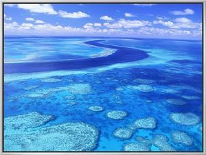 Australia's Great Barrier Reef by Theo Allofs