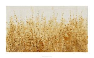 Ochre Fields I by Tim O'toole