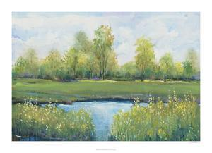 Tranquil Park II by Tim O'toole
