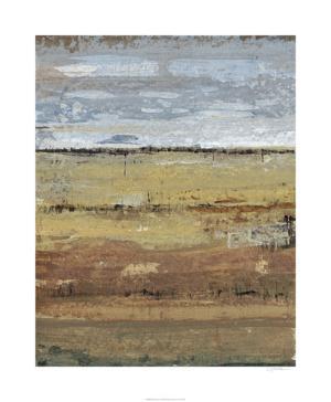 Field Layers I by Tim OToole