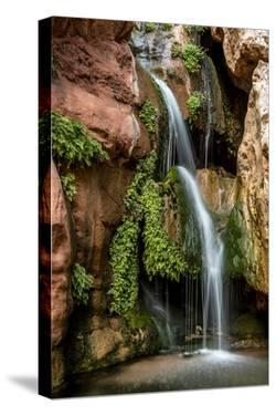 Clear Creek Falls. Clear Creek. Grand Canyon. Arizona. USA by Tom Norring