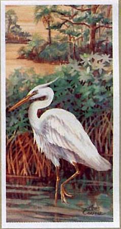 Bayou Heron III