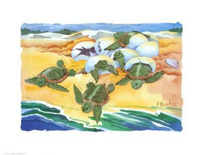 Turtle Nestings