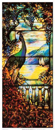 Peacock Window I