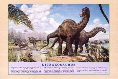 Dicraeosaurus Dinosaurs