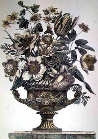 Flowers in an Urn I