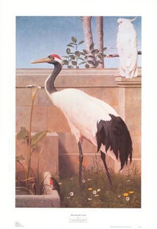 Manchurian Crane, Cockatoo and Robin
