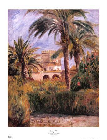 Moroccan Palms