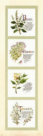 Kitchen Herbs I